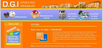 DGI Consulting Accueil.jpg