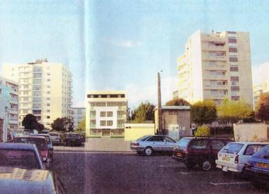 Tournesols-image.jpg